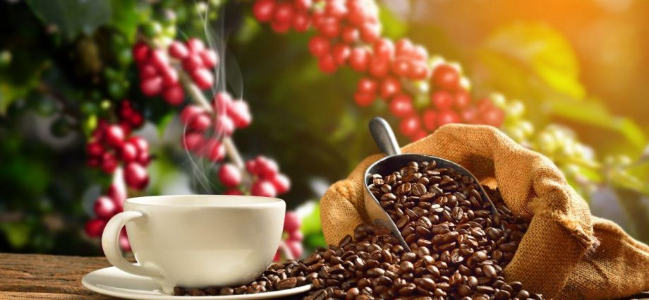Who's Your Coffee Beans Customer?